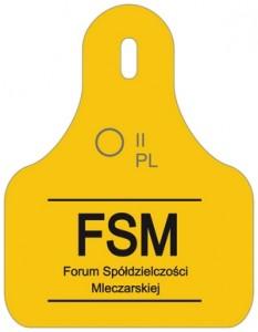 FSM w CDR_NOWY